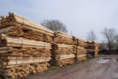 funderings technieken hout palen rond geschild onbehandeld
