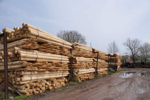 Palen epicea water werken grond hout gepunt