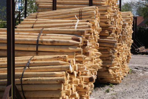 geschilde boompalen epicea rondhout te koop Limburg