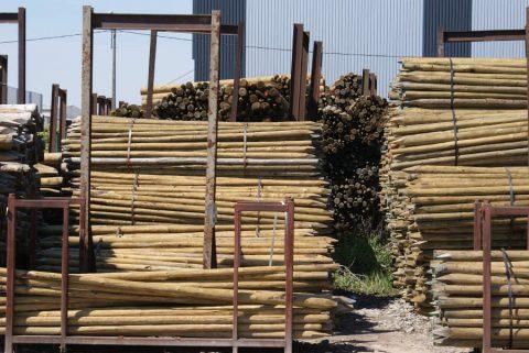 groothandel epicea rondhout palen geschild