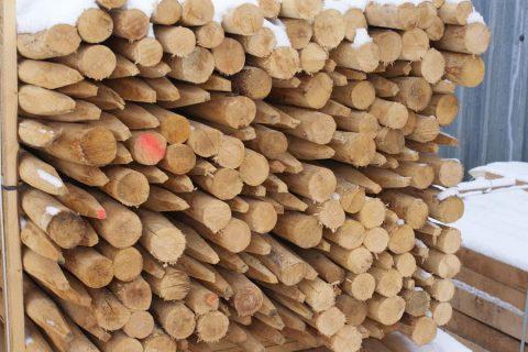 Robinia rondhout gepunte palen Limburg