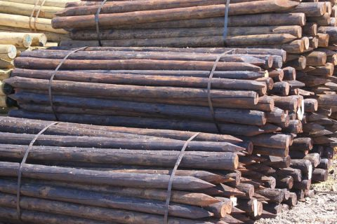 epicea hout creosoteren