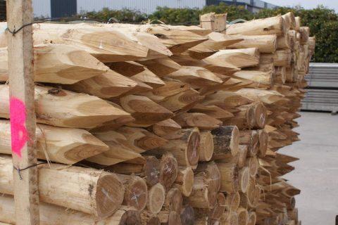 geschuurde robinia rondhout weidepalen boompalen