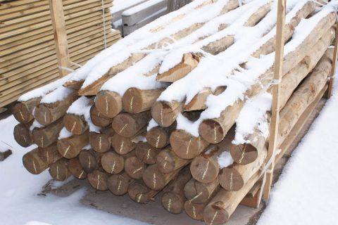 robinia rondhout palen verschillende lengtes